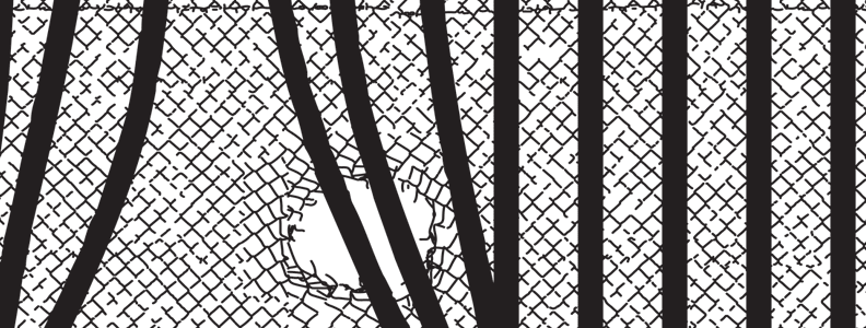 Political Prisoner Birthday Poster For November 2015